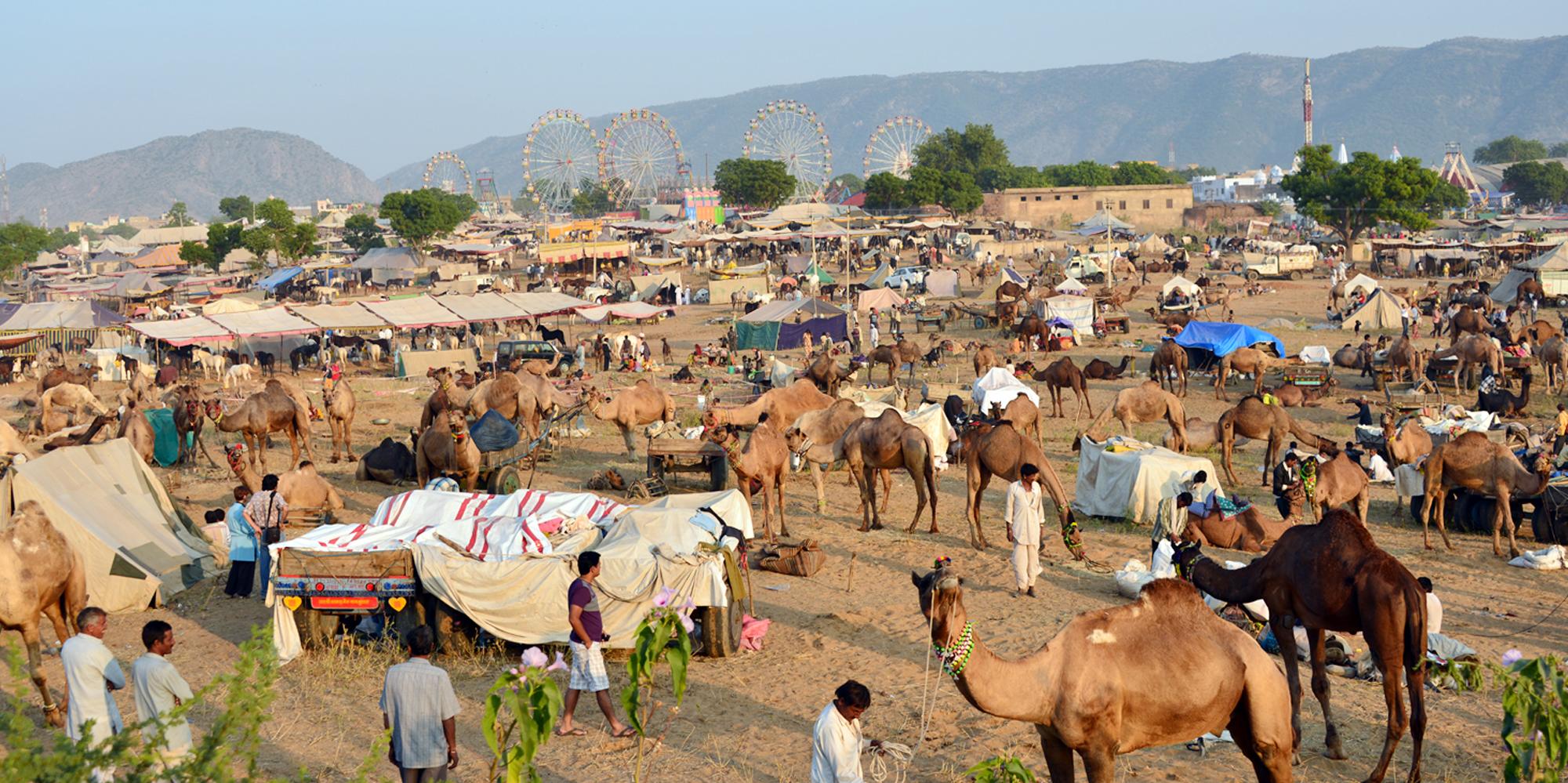 Pushkar Fair Tours
