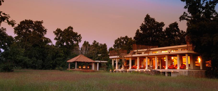 Taj Safaris