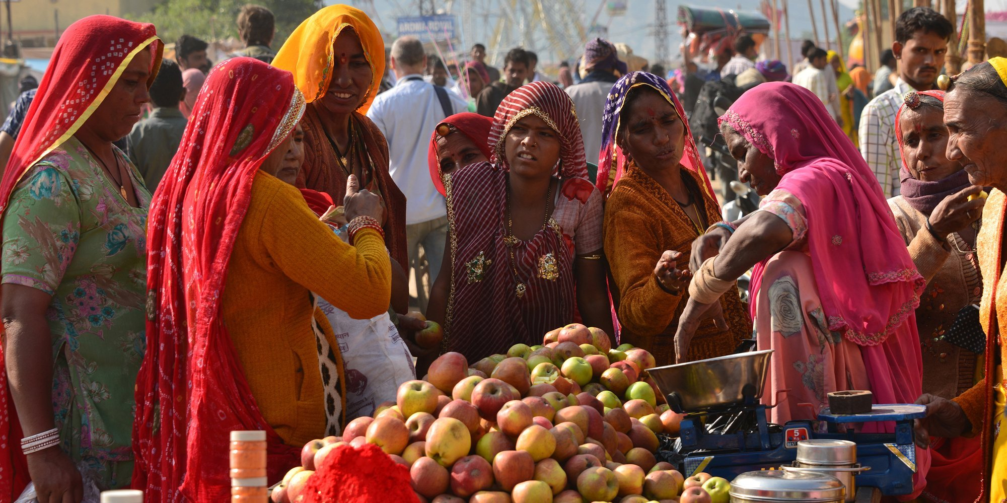 Shopping for Apples, Pushkar Fair
