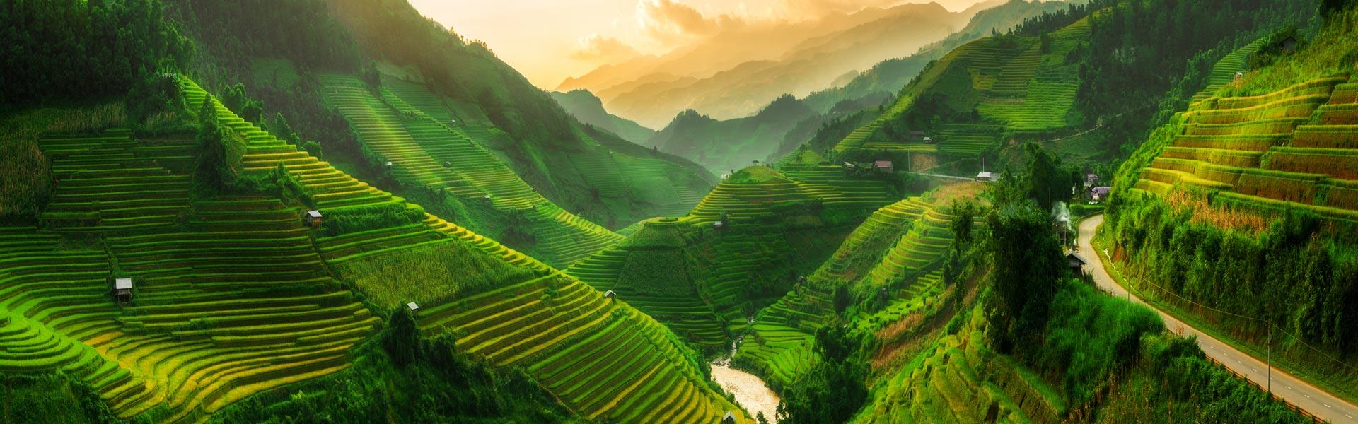 Rice Terraces Southeast Asia
